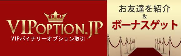 vipoption-syoukai
